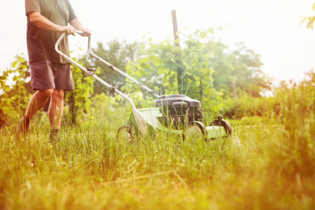 Man Mowing Overgrown Lawn