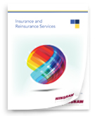Hinshaw & Culbertson Insurance and Reinsurance Services Brochure