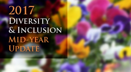 2017 Diversity & Inclusion Mid-Year Update